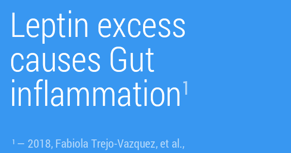 Leptin excess causes Gut inflammation